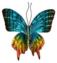 Sunset Moth.jpg