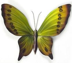 Butterfly - Green.jpg