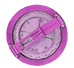 pink compass .png
