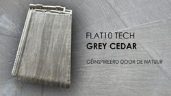 greycedar1
