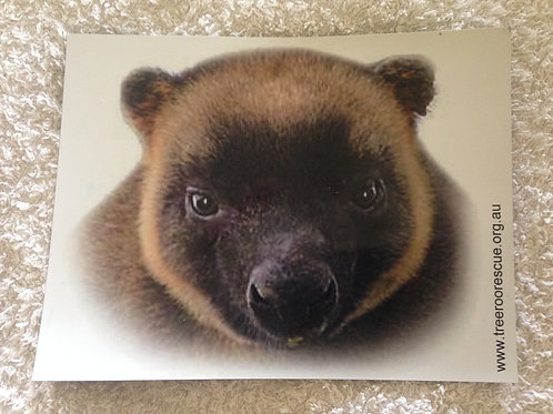 Tree Roo fridge magnet face