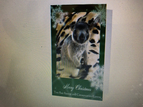xmas cards, Jilly