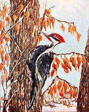 wip woodpecker.jpg