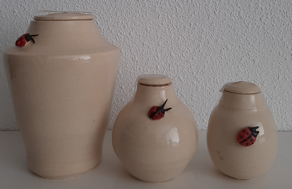 urn lieveheersbeestjes.jpg