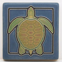turtleblue.jpg