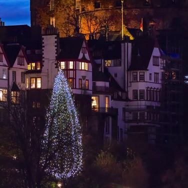 (861) The Norwegian Christmas Tree on Th