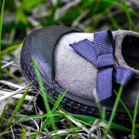 (1077) Lost Shoe Washed up on Beach, Cra