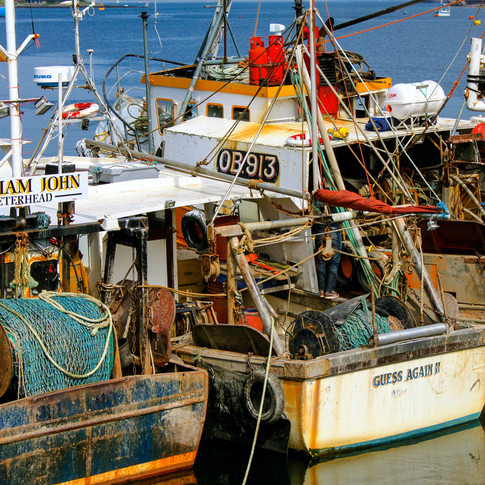 (8) Fishing Boats, Oban Harbour Guess Ag