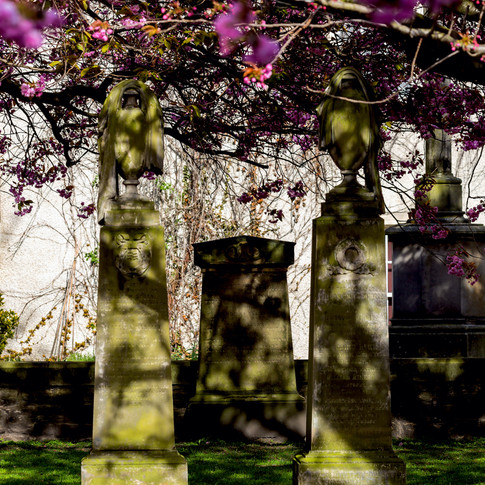 (503) Canongate Kirk in Spring, 153 Cano