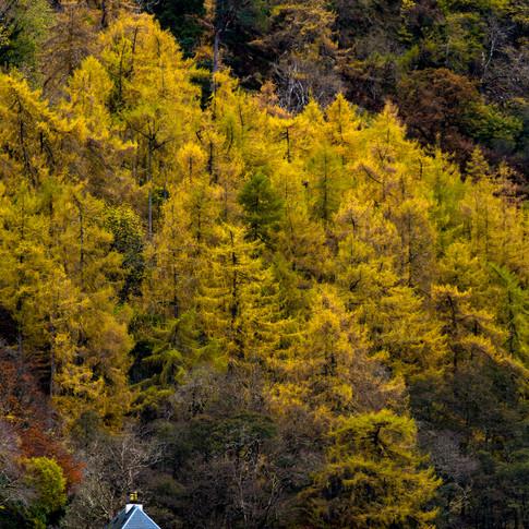 (309) Cottage on Loch Duich, Totaig, Kyl