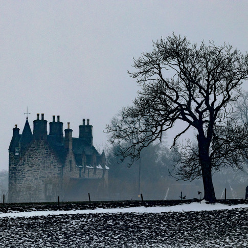 (1013) Illieston Castle and Horse throug