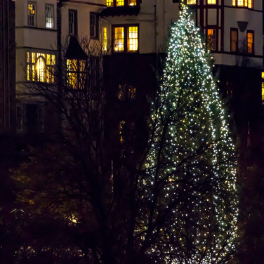 (918) The Norwegian Christmas Tree and R