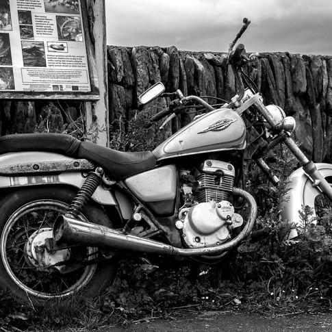 (753) Suzuki Marauder Motorcycle, Ellena