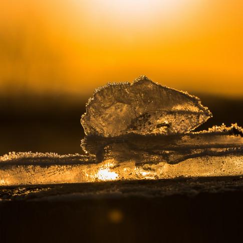 (888) Backlit Ice on Fence Post, Ratho,