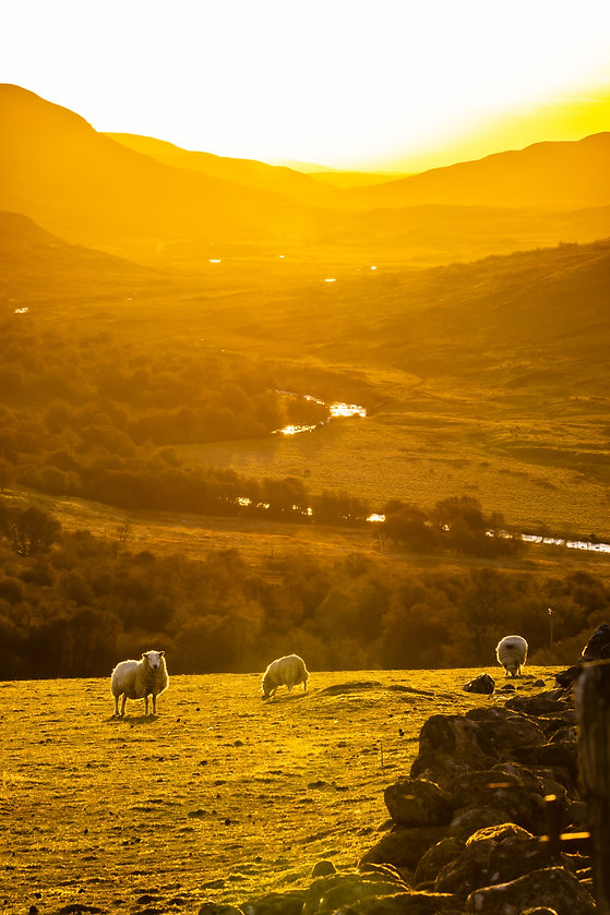 Golden Hour Over The River Brora, Strath