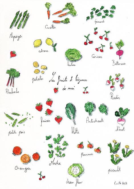 Les fruits & légumes du mois