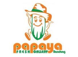 papaya logo.jpeg