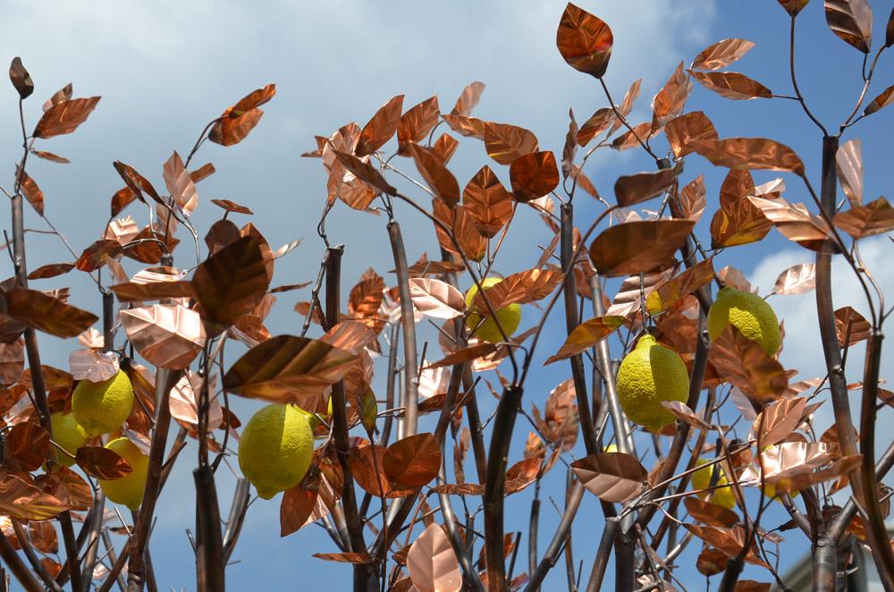 Sitruunapuu metallia