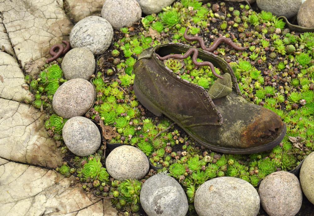 puutarhurin kenkä