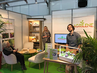 Stand sival D1.jpg