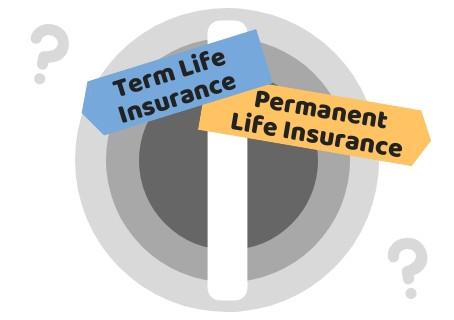 Term x Permanent life insurance