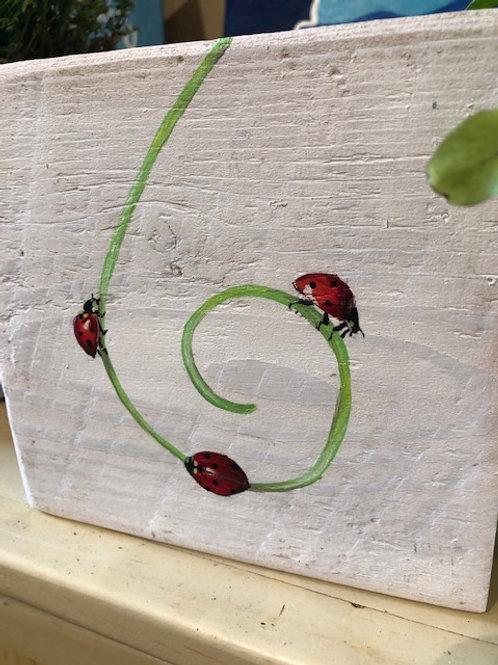 Ikaros Art - Ladybugs