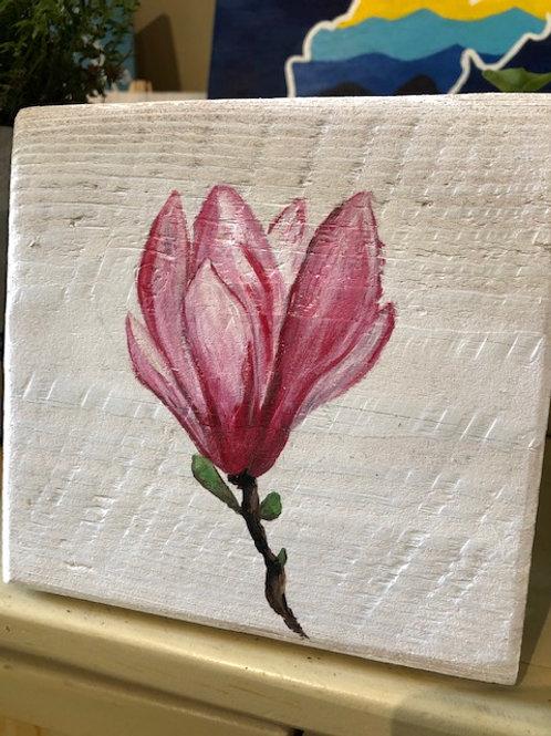 Ikaros Art - Magnolia
