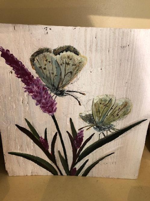Ikaros Art - Butterflies