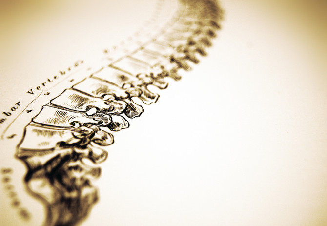 An Introduction to Primary Spine Care