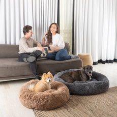 DogBed-101.heic