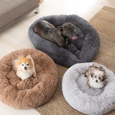 DogBed-107.heic