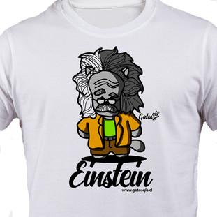 Gato Einstein