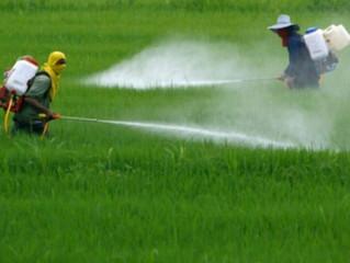 Justicia Climática en el Sistema Interamericano: caso de la presencia de residuos agrotóxicos en cue