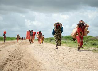 Desplazados climáticos y protección internacional: nuevos avances para la construcción de una costum