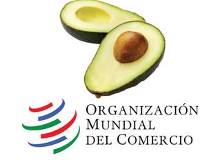 Consideraciones sobre la disputa comercial entre Costa Rica y México