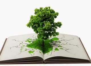Derecho Humano a un Ambiente Sano, un Derecho Humano Sui Generis