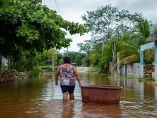 Crisis acumulativas: pandemias, cambio climático y ambiente