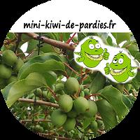 logo pour muguet.png