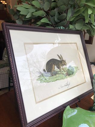 Vintage Framed Bunny Print