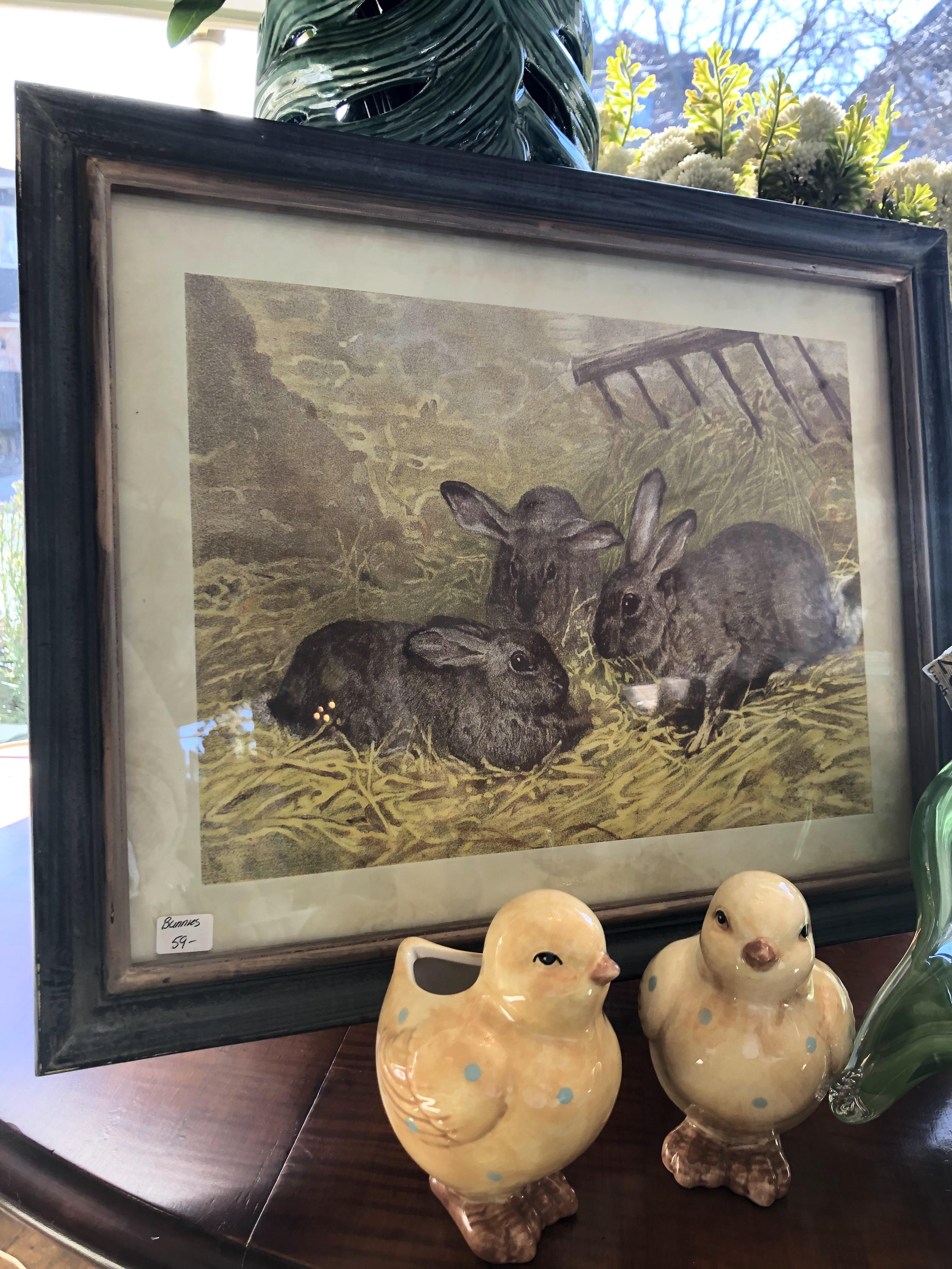 Framed Bunny Print