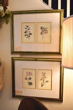 Framed Botanical Pairs