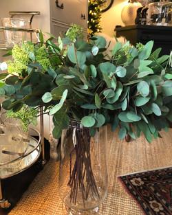 Tall Eucalyptus Stems