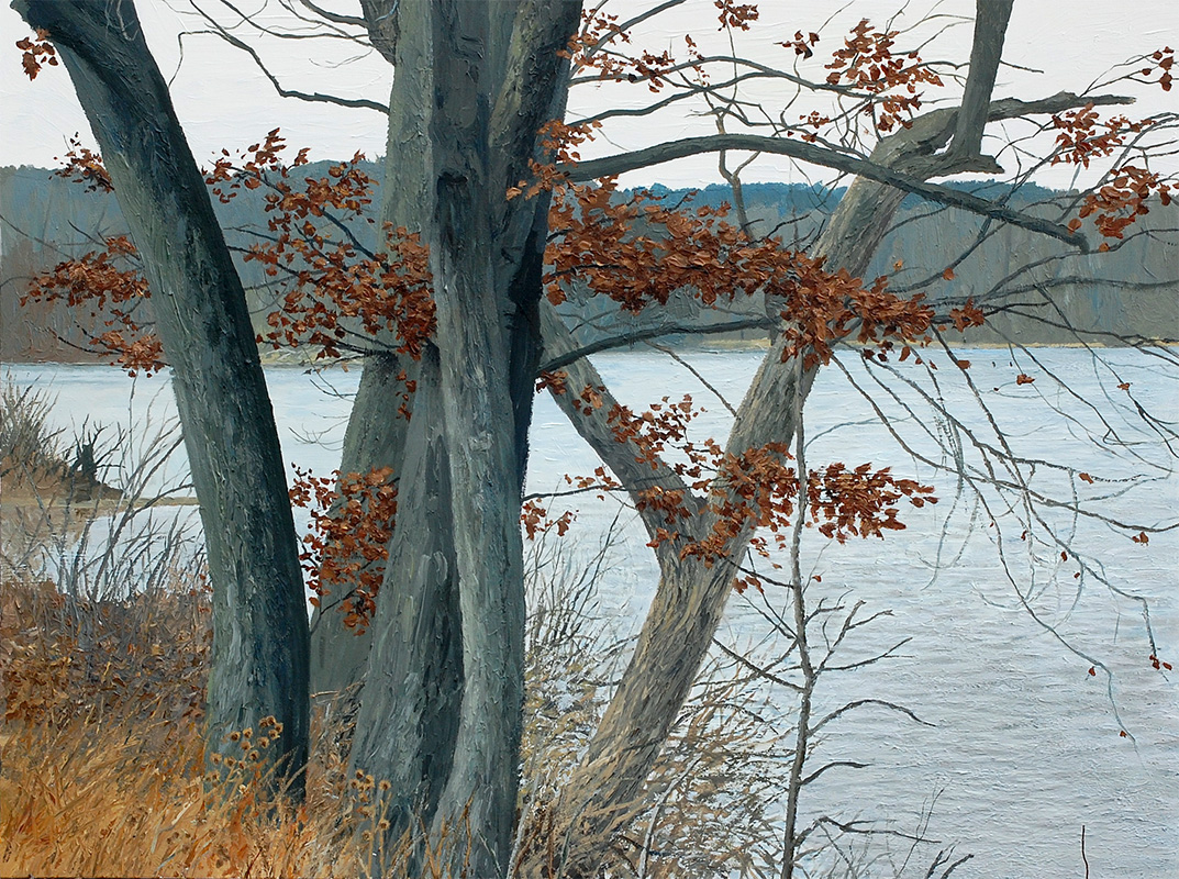 Cootes5