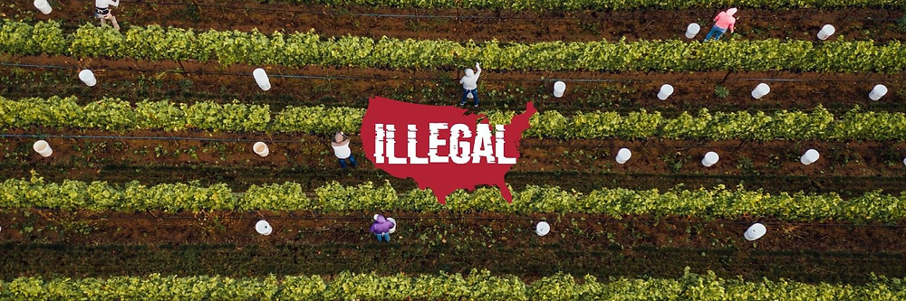 Illegal The Documentary Coming Spring 2020