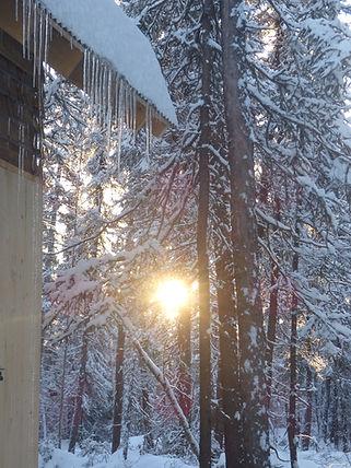 Early spring light returns.JPG