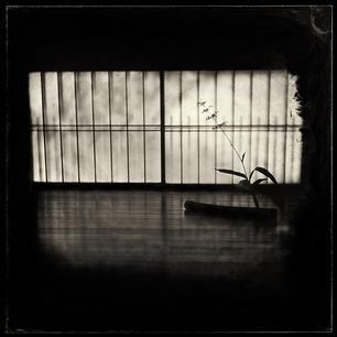 Sankei-en #12