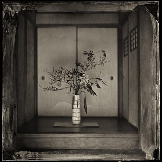 Ikebana 26