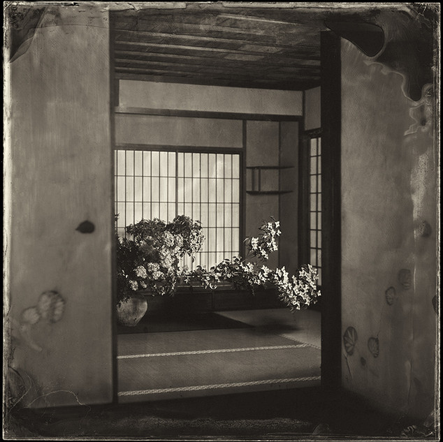 Ikebana 11