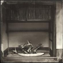 Sankei-en #10