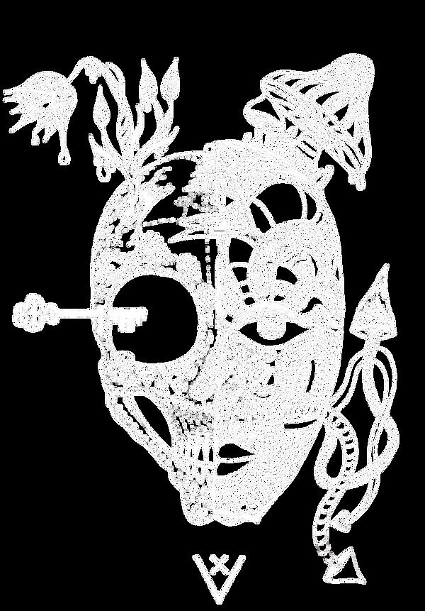 SkullWhite Logo.png